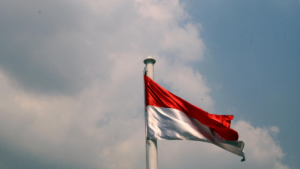 Energy Sector in Indonesia